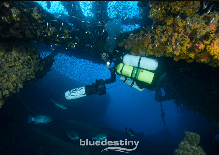 BLUE DESTINY perth diving blue water diver