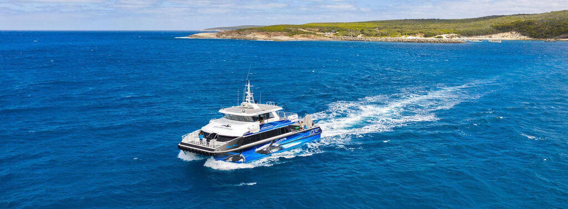 ALISON MAREE WHALE WATCHING TOURS